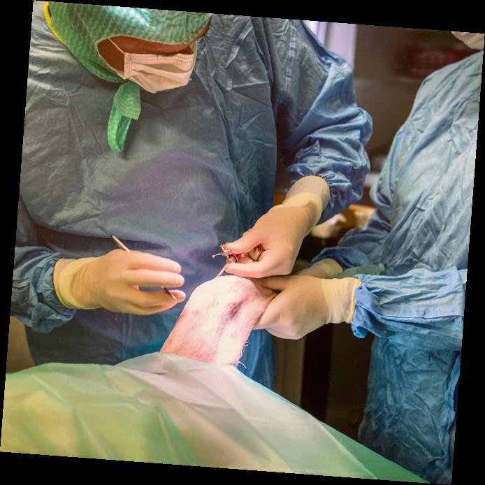 Gilles Steiner startet die Arthroskopie