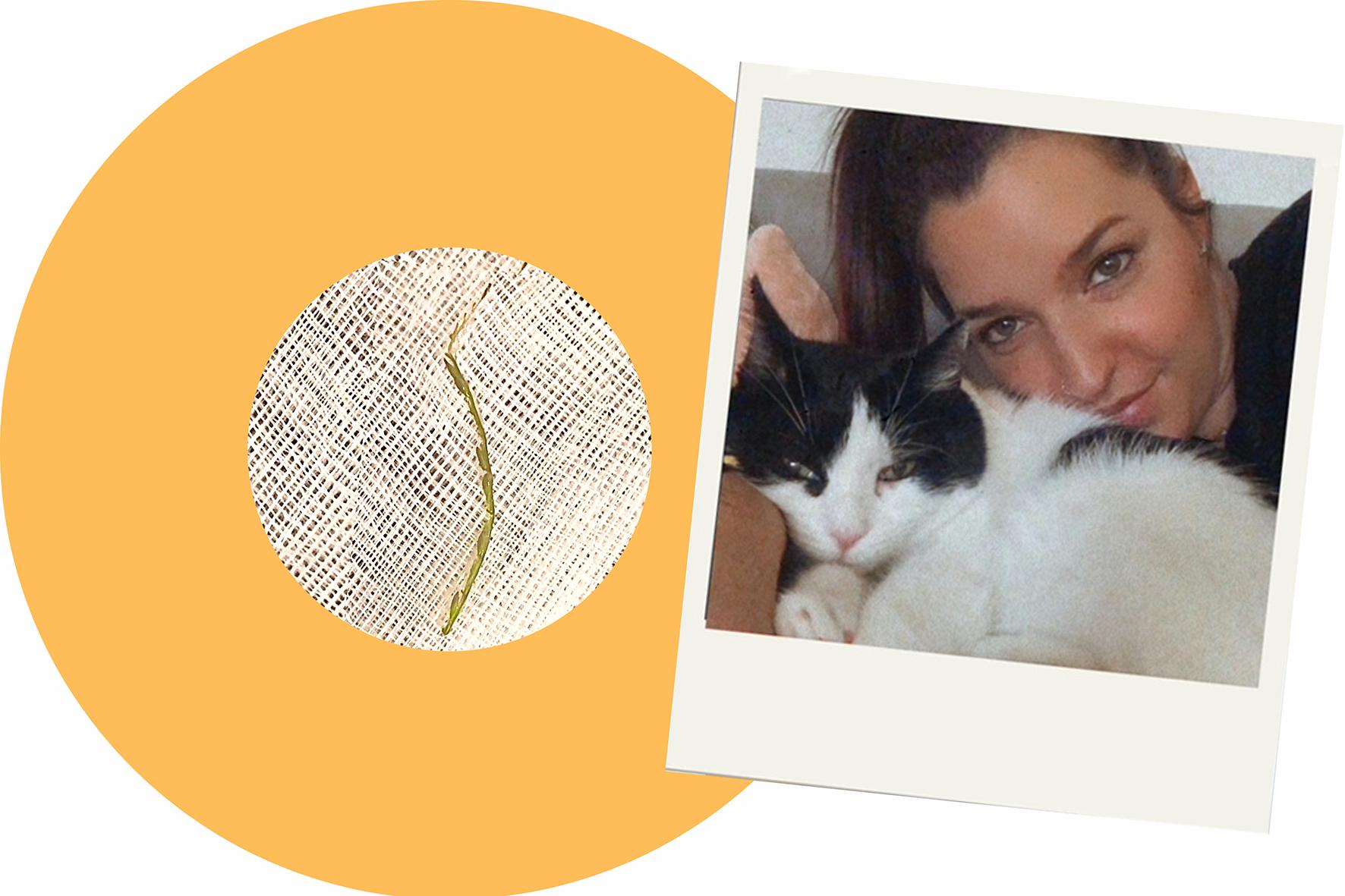 Grünzeug mit Widerhaken_Cécile Cordey mit ihrer schwarz-weissen Katze MeyMey